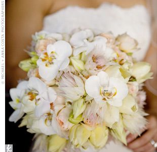 The bride carried a robust bouquet of ivory French tulips, soft pink garden roses, pink Blushing Bride protea and white cattleya orchids.