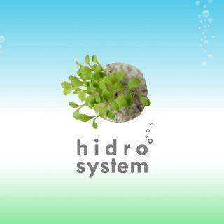 Hidroponía La palabra Hidroponía deriva de las palabras griegas Hydro (Agua), y Ponos (labor o trabajo), significando literalmente trabajo en agua. Teniendo. http://slidehot.com/resources/hidro-system-ma-z100.65013/