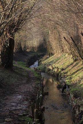 Voetpad Waalbroek Simpelveld langs de Eijserbeek