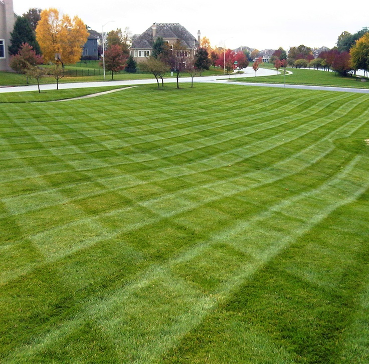Freshly Mowed Grass On An Autumn Day If You Need Some Landscaping Done Around Your House Or Workplace Call Lawn Tig Landscaping Inspiration Lawn Walled Lake