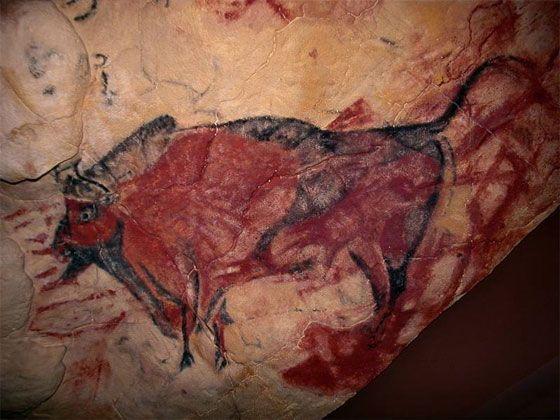 Изображение быка. наскальная живопись. пещера Альтамира, Испания.