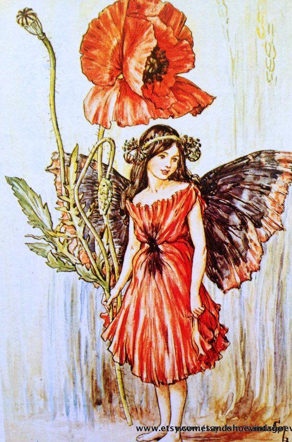 """Résultat de recherche d'images pour """"fairy papaver"""""""