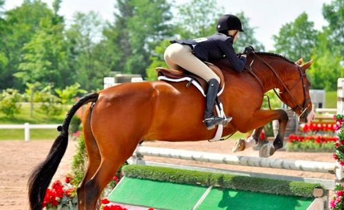 Great pair!!! I loobe her leg and bod. position! Her horse looks great too!!