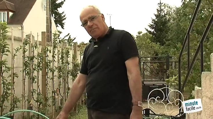 apprendre planter des poireaux dans mon jardin. Black Bedroom Furniture Sets. Home Design Ideas
