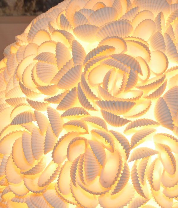 round shell lamp; hand-crafted shell lighting fixture. All shells are arranged delicately to form a round fixture that shimmers on polished  stone base; coastal lighting