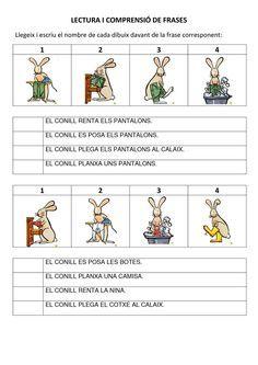 COMPRENSIÓ DE FRASES I CONCEPTES