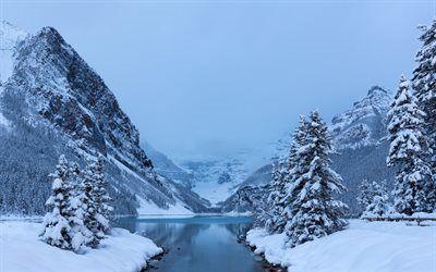 Scarica sfondi foresta, neve, montagne, inverno, lake louise, albero, banff, albert, canada