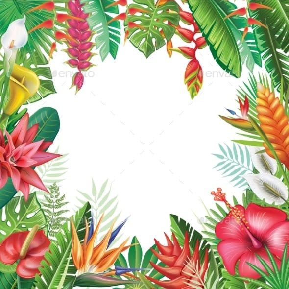 Frame From Tropical Plants Tropical Plants Tropical Frames Plant Vector