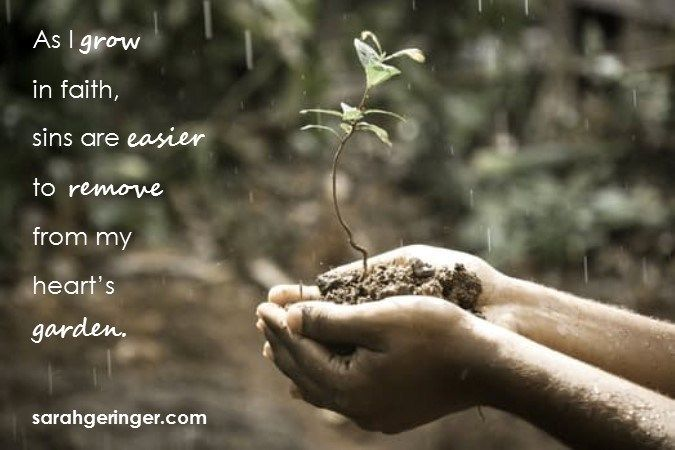 Good Soil in a Godly Heart | Sarah Geringer