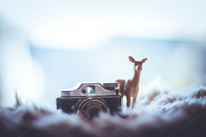 Deer with a tiny camera by Farkas B. Szabina on Creative Market