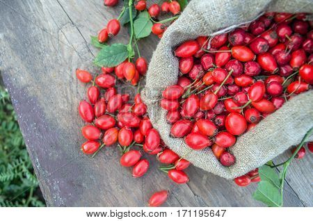 Hawthorn on wooden rustic table background. Rose hips haw fruit of the dog roses