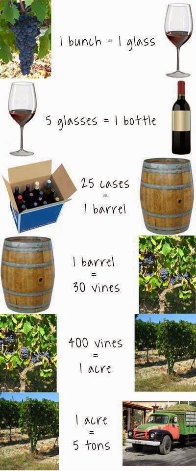 Vinho, Cerveja e Gastronomia: Curiosidades - As quantidades no vinho...