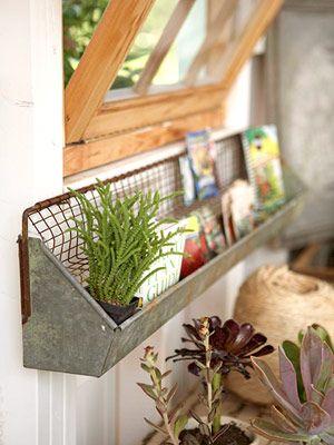 Chick feeder as shelf - cool