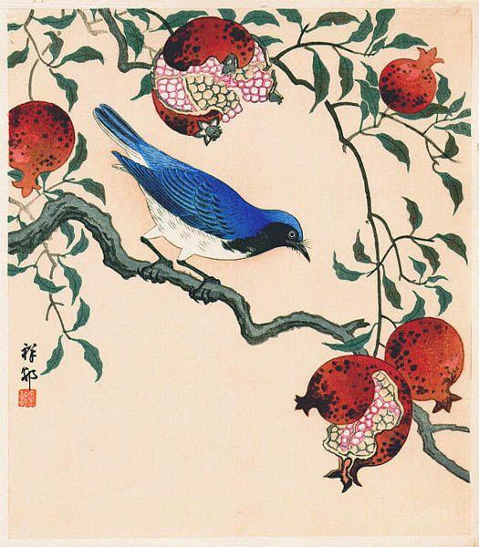 Ohara Koson / Flycatcher and Pomegranate