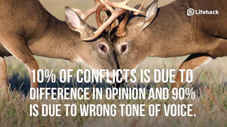 guidelines for effective communication during conflicts