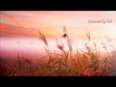 ▶ Background Music Instrumentals - relaxdaily - B-Sides N°1 - YouTube
