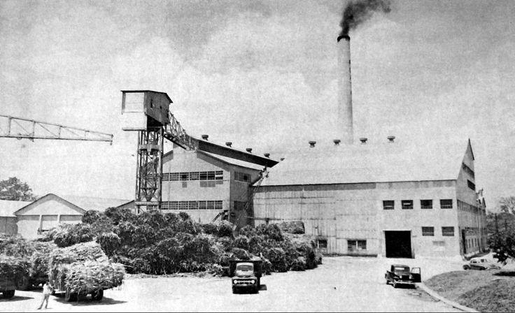 Central La Plata, San Sebastián, Puerto Rico. Operó entre los años 1910 y 1996. Capacidad: 5,000 toneladas por día. Propietarios: Plata Sugar Co., Inc. (1910) y Corp. Azucarera de P. R. (1976).