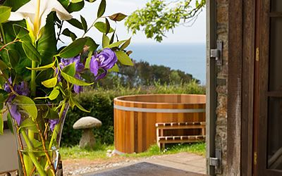 Holiday Cottages on the Devon South Coast