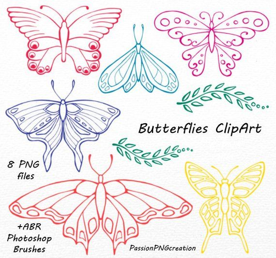 Hand Drawn Butterflies Clipart Set Includes 8 PNG Files With Transparent Backgrounds Approximately