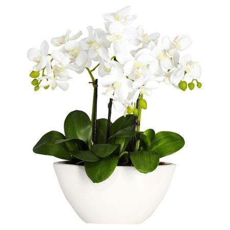 Showcasing a lovely cascade of blossoms, this beautiful faux orchid arrangement…