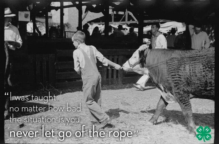 Something my dad told me my very first year!!! and got drug! by the rope! but never let go!