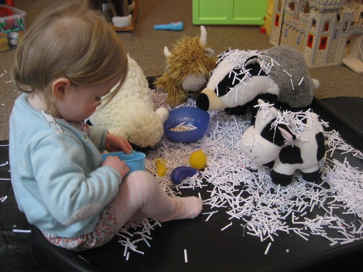 Feeding at the farm with shredded paper...