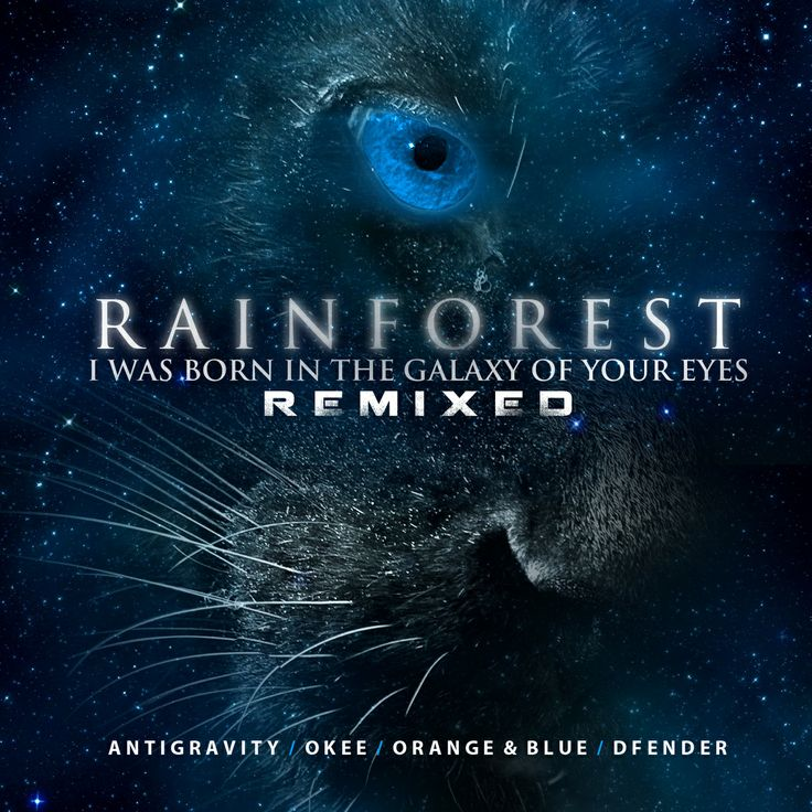 RAINFOREST - I Was Born in the Galaxy of Your Eyes  http://aztekelectronicmusic.net/releases/rainforest-born-galaxy-eyes-remixed/
