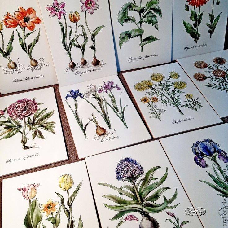 """Купить Плитка для ванны """" Ботанические гравюры"""" - разноцветный, ботаническая иллюстрация, ботанический рисунок, ботаника"""