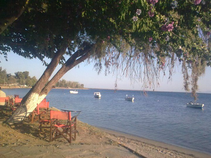 Cafe Pizza Raidos Epanomi !!! #Greece cafe and pizza #Thessalonik #Epanomi