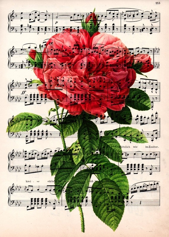 Red Rose on vintage1910 music - would make a lovely wall hanging!