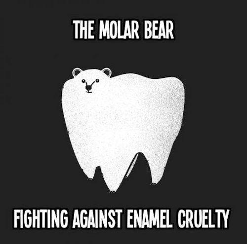 The Molar Bear #DentalHumor Turner Pediatric Dentistry | #Acworth | #GA | www.turnerpediatricdentistry.com