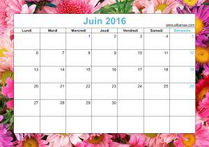 ✰ Calendrier Fleuri gratuit à imprimer 2016 ✰
