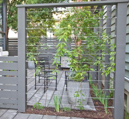 Wire trellis-screen