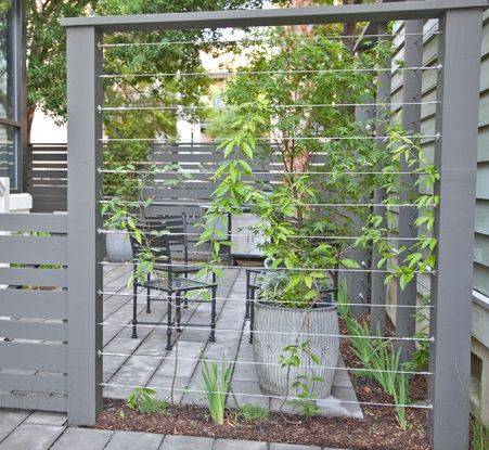 Wire trellis screen for the home pinterest gardens cable and fence posts - Pergola climbing plants under natures roof ...