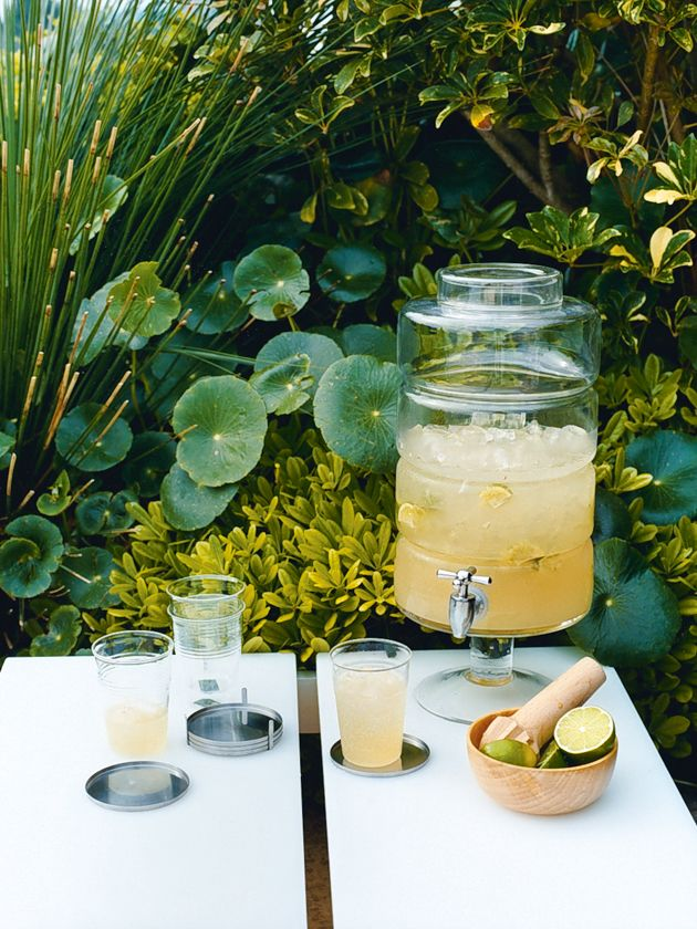 lime and ginger crush from donna hay