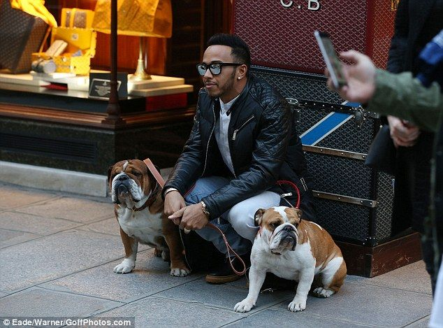 Man's bestfriend: Lewis Hamilton was the picture of happiness as he took his dogs,Roscoe and Coco, for a walk in Paris on Monday following the Stella McCartney PFW presentation