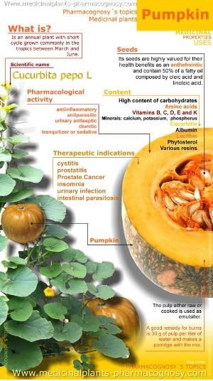 Pumpkin benefits #health #Infographic by angelina