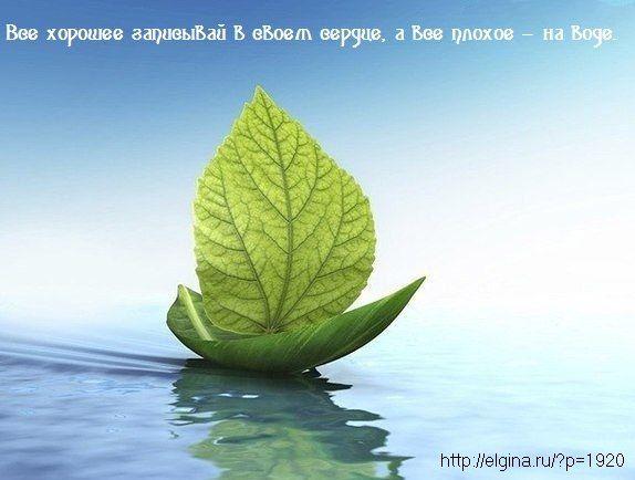 Все хорошее записывай в своем сердце, а все плохое — на воде.