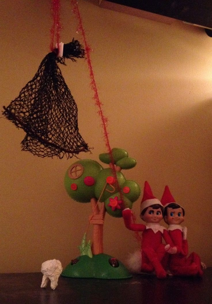 Tooth Fairy trap | Christmas elf, Elf on the shelf, Elf