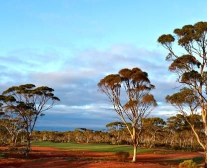 """The Kalgoorlie Golf Course is a premier, 18 hole golf course designed by top course designer Graham Marsh. Featuring a rugged desert layout in the heart of the Western Australian outback, it is owned by the City of Kalgoorlie Boulder, and managed by Prime Golf WA. In 2012 the Kalgoorlie Golf Course featured in Australian Gold Digest's """"Australia's Top 100 Courses"""". It is anticipated that the course will become one of the top 10 desert golf courses in the world."""