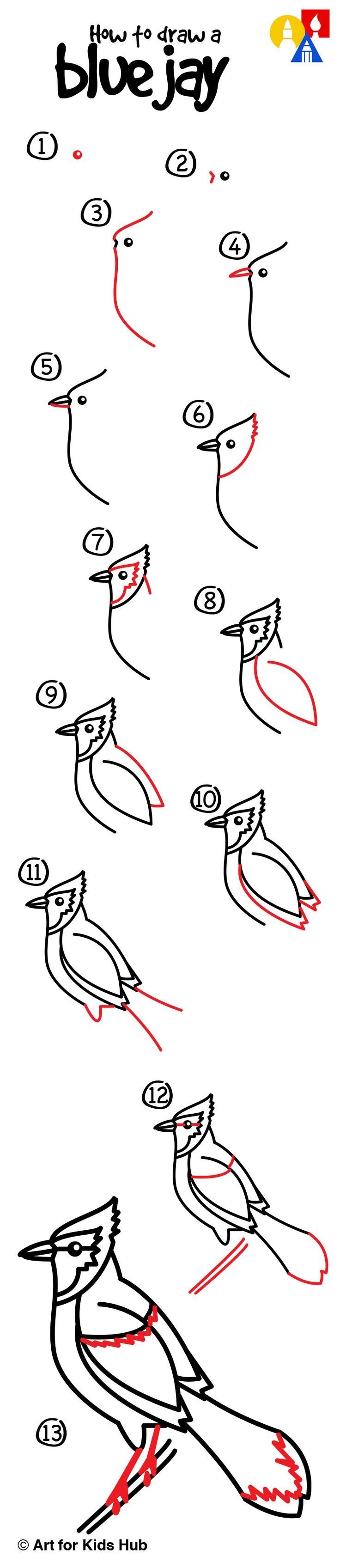 How To Draw A Hummingbird  How To Draw A Blue Jay For Kids!: