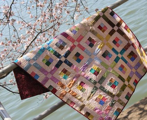 quilt design by Wendy Sheppard (Ivory Spring)   Source;  Ivory Spring