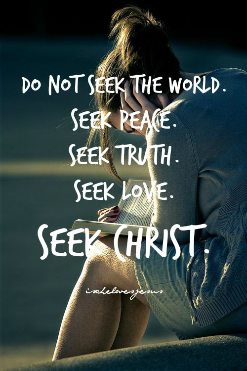 Do not seek the world.Seek Peace.Seek Truth.Seek Love.Seek Christ.: