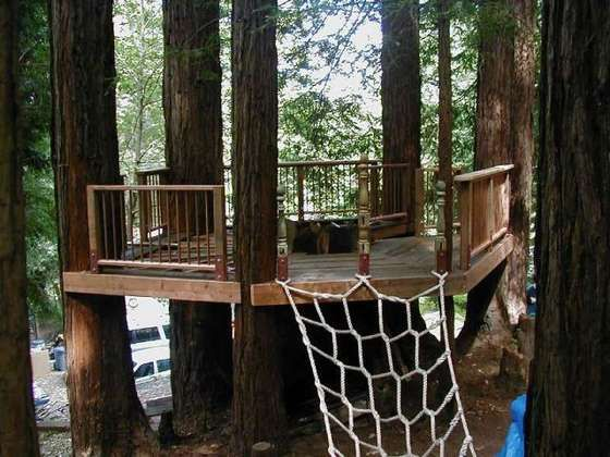 thinking of building a little tree deck.. simpler than a whole tree house but still very fun! You could always use this as a platform for a Yurt or bell tent.