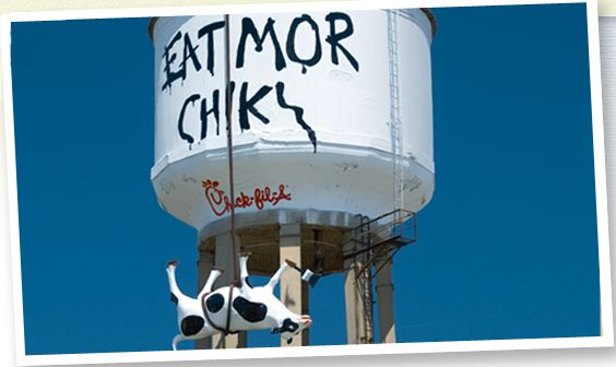 """chick fil a eat mor chikin Chick-fil-a's """"eat mor chikin"""" advertising campaign, which started in 1995 with the first billboard, is one of the longest-running in the united states."""