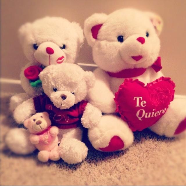 White Teddys