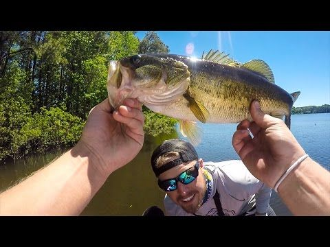 Bed Fishing for Bass ft. LunkersTV - (More info on: https://1-W-W.COM/fishing/bed-fishing-for-bass-ft-lunkerstv/)