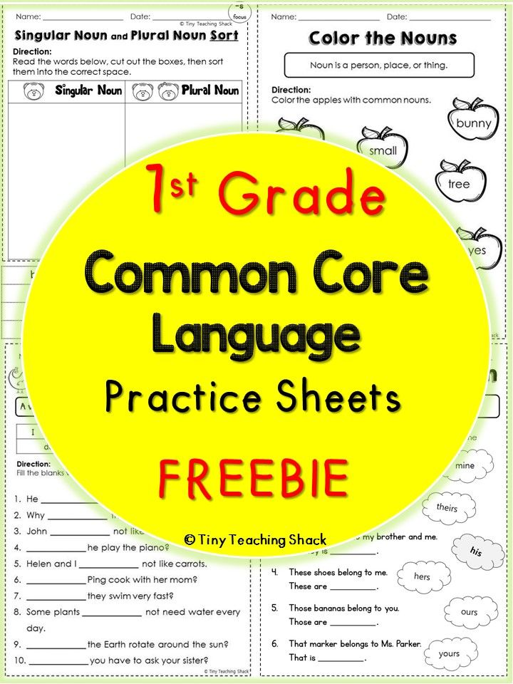 1st grade Common Core Language practice sheets (first and second grade)