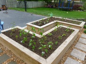 above ground garden box