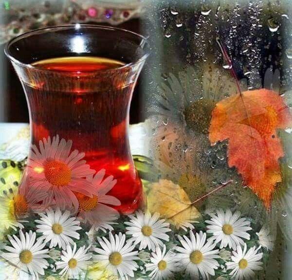 """""""Tebessüm ettiren, sevgi ve güzelliklerle dolu, keyifli ve mutlu bir gün geçirmeniz dileğiyle.. Günaydın"""